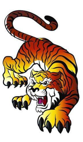 Tigre représentant le baume du tigre blanc : soulager les douleurs musculaires