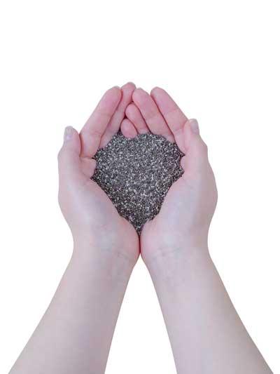 Graines de chia, le super aliment, dans des mains