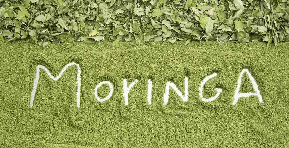 Le moringa oleifera, le superaliment à découvrir