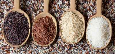 Les céréales sont une composante essentielle du régime macrobiotique