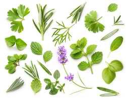 Vous pouvez mettre des aromates dans vos jus verts ou de légumes