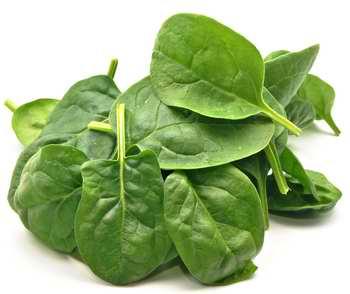 Les épinards : puissants reminéralisants et un excellent apport en chlorophylle !