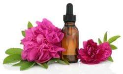 L'eau florale de Rose de Damas ou bulgare (Rosa damascena) pourra vous aider à vous sentir rassurée, femme et remplie d'amour.